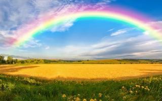 【代写作文】透过风雨见彩虹