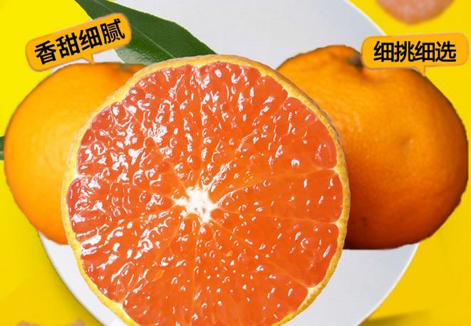 水果照片.jpg